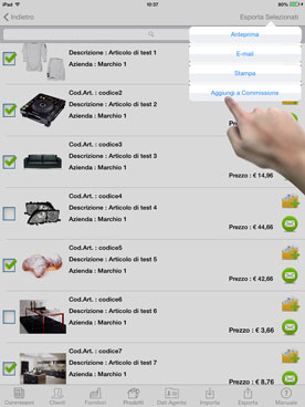 Products Catalog on iPad